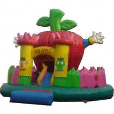 New Inflatable Bounce Playground with Slide (C1282-6)